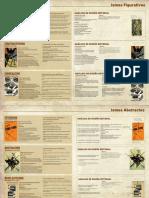 MOVIMIENTOS ABSTRACTOS-figurativo y escuela de la bauhaus.pdf