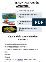 Tipòs de Contaminación Ambiental