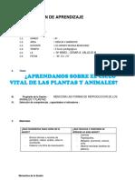 Ciclo Vital de Las Plantas y Animales