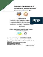 Bact. PDF Info