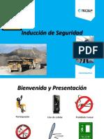 induccinalaseguridadi-140130112640-phpapp01.pdf
