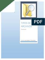 Tipos de Archivos y Sus Extensiones
