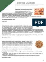 formula-as.ro-Campionii energiei - SEMINŢELE şi SÂMBURII
