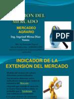 EXTENSION DE MERCADOS.pptx