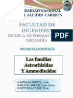 4-micropaleontologia-aztrorhizidae