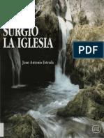 118607096-Juan-Antonio-Estrada-Para-comprender-como-surgio-la-Iglesia.pdf