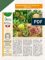 boletin_tecnico(5-3).pdf