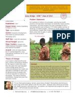 Literacy Bridge - GSBI 2010 - Factsheet