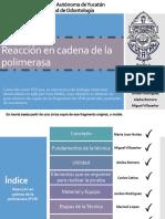 pcrtodos-131201194615-phpapp01