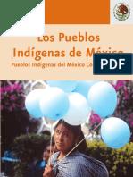 Que Significa Ser Indigena Hoy