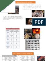 Produccion Minera y Exportaciones