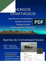1291746626.Clase 8.Hongos Dematiaceos