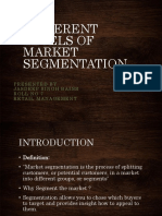 Levels of Market Segmentation 1
