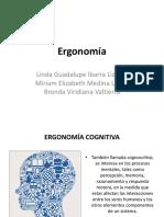 Tipos de Ergonomía