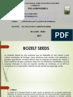 Modelo de Negocio Empresa Bozelt