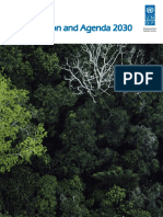 UNDP-RBLAC-AmazonAgenda2030EN