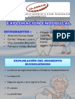 EXPLORACIÓN ENDOBUCAL