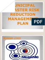 Dangcagan Disaster Risk Reduction and Management Plan  2017-2019