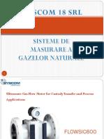 02 Sisteme de Masurare a Gazelor Naturale - Gaz Cromatograf