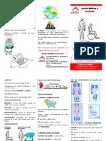 tripticoescara-120423235226-phpapp02.pdf