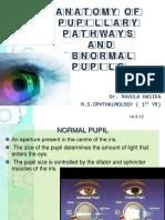 anatomyofpupillarypathways-130402124741-phpapp01