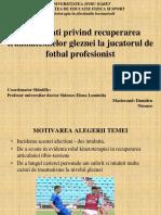 Dumitru Nicusor Program PP Disertatie.ppt