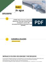 acuaporinas (3)