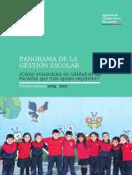 Libro Panorama Web