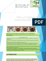 desintoxicacion ionica (Jessmar Spa Elvia Martinez).pptx