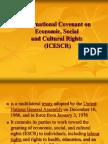 International Covenant on Economic, Social (1)