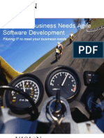 Why Your Business Needs Agile Software Development v1.0