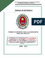 Tdr - Pavimentacion Micaela Bastidas Gaby-paso a Pdt