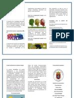 Modelo Propuesto Por El Grupo de Investigación en Gestión Del Conocimiento