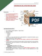 Afecciones Quirurgicas Del Intestino Delgado 19 - 07