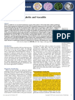 ANCA Glomerulonephritis and Vasculitis