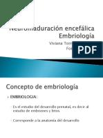 1-A Neuromaduración Encefálica - Embriología Enviada