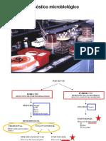 Clase 2 Semestre I Diagnostico Microbiológico 2O17