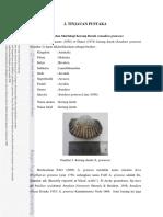 2.1 Anadara.pdf