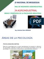 Areas y Princioios de La Psicologia