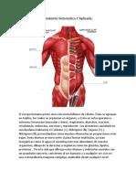 Anatomia Sistematica Y Aplicada