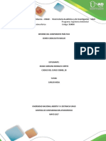 Informe Practico_ Diana Morales (3)
