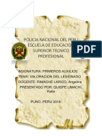 monografia primeros auxilios