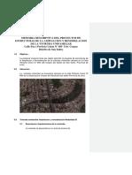 MDE frida .pdf