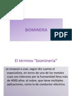 Biomineria Nuevo
