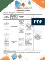 Matriz Resumen Y Diagrama Causa Efecto