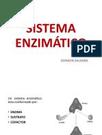 254340897-Sistema-Enzimatico.pdf