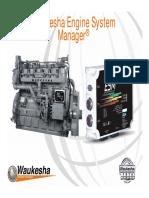 ESM-Basic Presentation-2009.pdf
