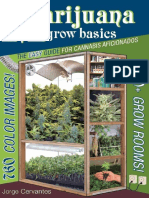 Marijuana Grow Basics - Jorge Cervantes