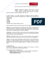 tema23-sistema-digestivo.pdf
