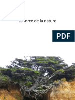 La fuerza de la naturaleza.pps